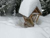Zasněžený krmelec u chaty