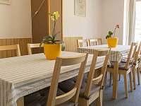 Společenská místnost Pension - Vrchlabí