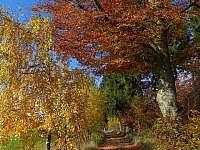 I na podzim je tady krasně - Rudník u Vrchlabí