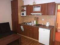 Apartmán Horní Rokytnice - apartmán k pronájmu - 6