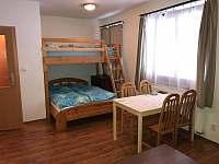 Apartmán Horní Rokytnice - apartmán k pronajmutí - 4