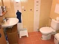 Apartmán Horní Rokytnice - apartmán k pronájmu - 10