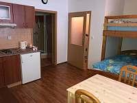 Apartmán Horní Rokytnice - pronájem apartmánu - 7