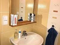 Apartmán Horní Rokytnice - apartmán k pronajmutí - 11