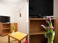 Apartmán Karolína - apartmán k pronájmu - 6 Harrachov
