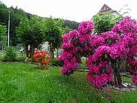 zahrada - Trutnov