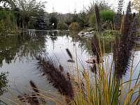 Relax chaloupka - odpočinek u rybníka - ubytování Černý Důl - Čistá v Krkonoších