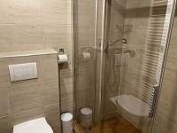 koupelna v apartmá - chalupa k pronájmu Nová Paka - Štikov