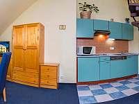 Apartmány YELLOW SKI - 4 lůžkový - Rokytnice nad Jizerou
