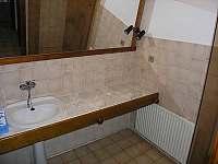 koupelna v přízemí se sprchovým koutem - apartmán k pronájmu Rokytnice nad Jizerou