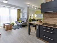 Apartmán k pronájmu - pronájem apartmánu - 18 Horní Mísečky