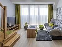 Apartmán v Horních Mísečkách - k pronájmu