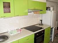 Apartmán 1 + 1 - pronájem Horní Maršov