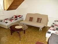 Apartmán 4 + 1 - k pronajmutí Horní Maršov