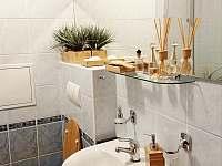 Apartmán U Sklárny - koupelna - k pronájmu Harrachov