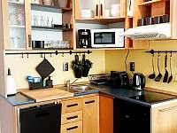 Apartmán U sklárny - pronájem apartmánu - 12 Harrachov