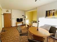 Apartmán 1 obývací pokoj celek - ubytování Harrachov