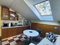 Apartmán 2 kuchyňský kout a obývací pokoj - Harrachov