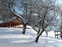 zahrada - zima - Vrchlabí - Hořejší Vrchlabí