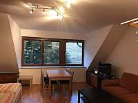 Apartmán Švadlenka - apartmán k pronajmutí - 11 Rokytnice nad Jizerou - Horní Rokytnice