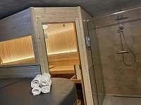 Sauna s vířivkou a sprchou v suterénu - pronájem chaty Vítkovice v Krkonoších