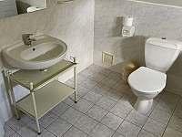 Koupelna v podkroví - Černý Důl - Čistá v Krkonoších