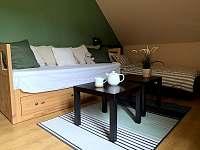 Ložnice / obývací pokoj - pronájem apartmánu Vítkovice v Krkonoších