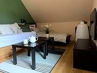 Ložnice / obývací pokoj - Vítkovice v Krkonoších