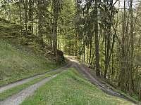 Příjezdová cesta - pronájem chalupy Bratrouchov