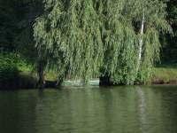 Chata u rybníka - chata - 26 Trutnov - Oblanov