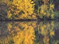 Chata u rybníka - pronájem chaty - 25 Trutnov - Oblanov