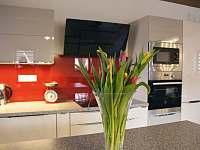 Kuchyň- přístpná pro apartmán se 3 ložnicemi a samostatné pokoje - Vítkovice v Krkonoších