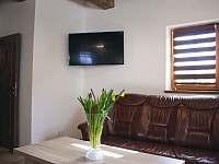 Obývací pokoj - společenská místnost - Vítkovice v Krkonoších