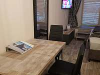 Apartmán Čertovka - apartmán k pronajmutí - 8 Harrachov