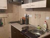 Apartmán Čertovka - apartmán ubytování Harrachov - 9