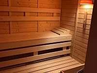 Apartmán Eterna se saunou - apartmán k pronájmu - 10 Rokytnice nad Jizerou