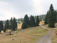 Horská chata Berghof - pronájem chaty - 12 Pec pod Sněžkou