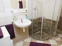 Apartmán 466 - apartmán ubytování Rokytnice nad JIzerou - 9
