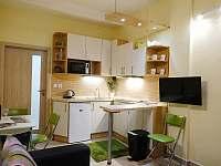Apartmán 466 - apartmán k pronájmu - 3 Rokytnice nad JIzerou