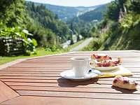 Ranní káva s dortíkem na slunné teraase - chalupa ubytování Pec pod Sněžkou - Velká Úpa