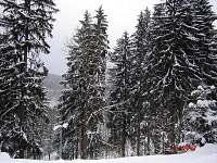 Chalupa u Jizery - chalupa - 16 Rokytnice nad Jizerou
