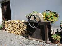 palivové dřevo je u nás zdarma