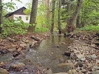 Hořická chata, Zrcadlový potok - pronájem Černý Důl