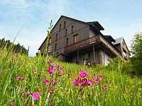Ubytování na chatě v Rokytnici nad Jizerou - k pronajmutí