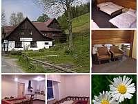 Chata Sedmikráska - chata k pronajmutí - 30 Dolní Lysečiny