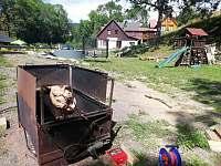 Dolní Lysečiny - chata k pronájmu - 14