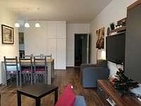 obývák - apartmán k pronajmutí Harrachov