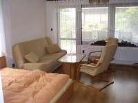 Radvanice - apartmán k pronajmutí - 12