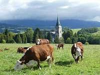 Farma U sv. Jakuba - apartmán - 42 Dolní Lánov