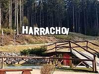 Chaty a chalupy Zákoutí Harrachov v apartmánu na horách - Harrachov